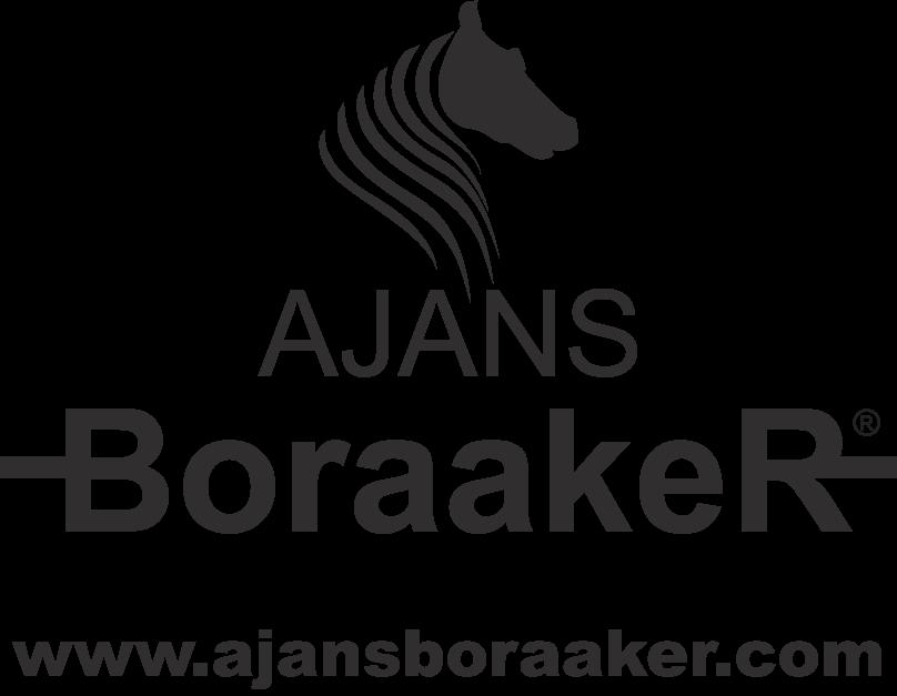 Ajans BoraakeR Ajans Bora Aker Resmi Web Sitesi